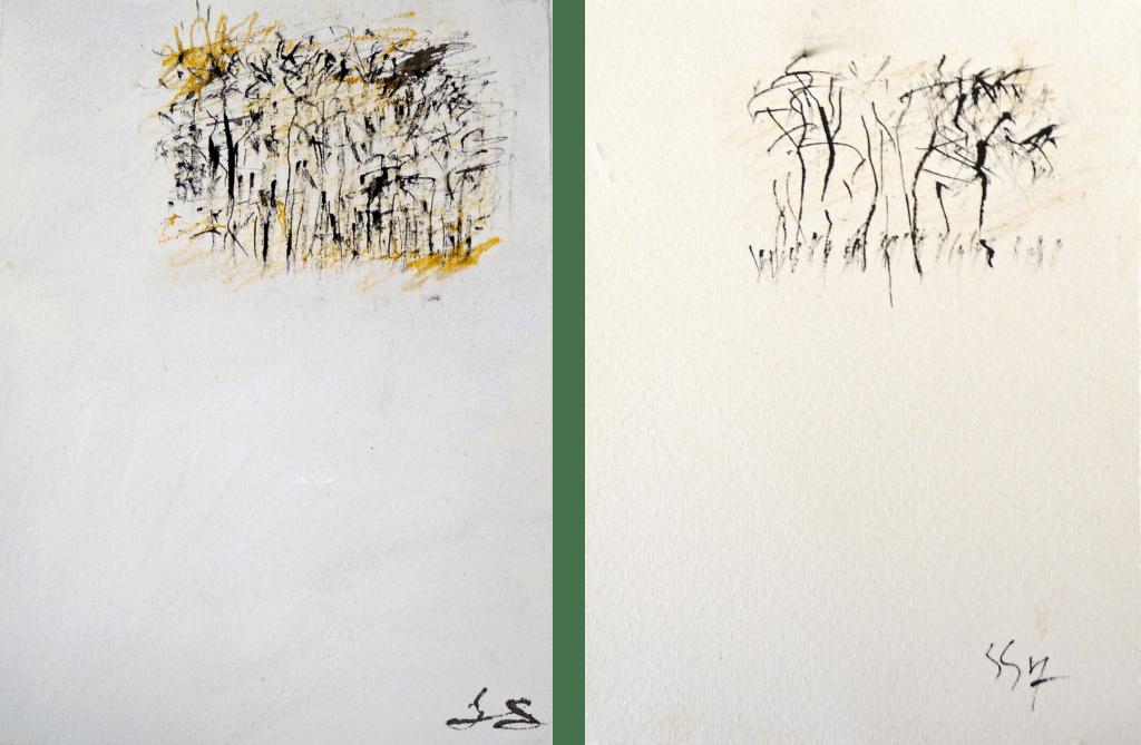 Variations on a birch copse after da Vinci 1 & 7