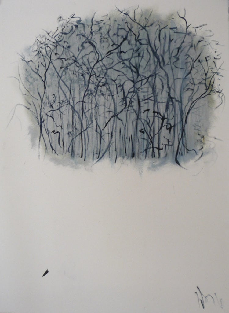 Variations on a birch copse after da Vinci, Grey
