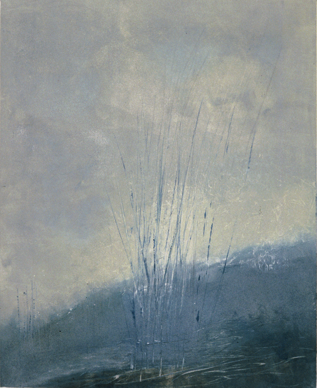 Blue Grasses 1