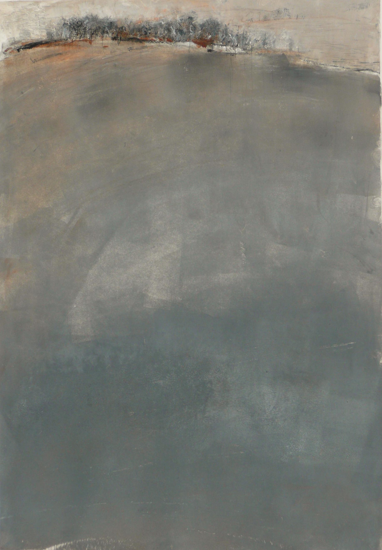 Grey Field 2