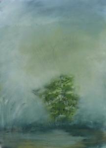 Tree in Marsh, early morning