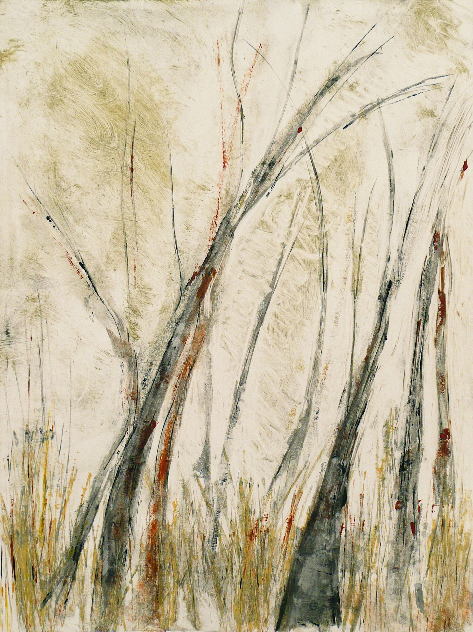 Winter Trees 5